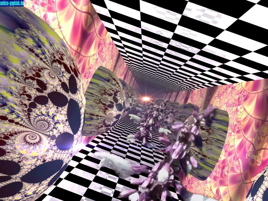 http://www.psykick.de/salvia/images/bildergalerie/Art-Salvia-Mirrorworld.jpg